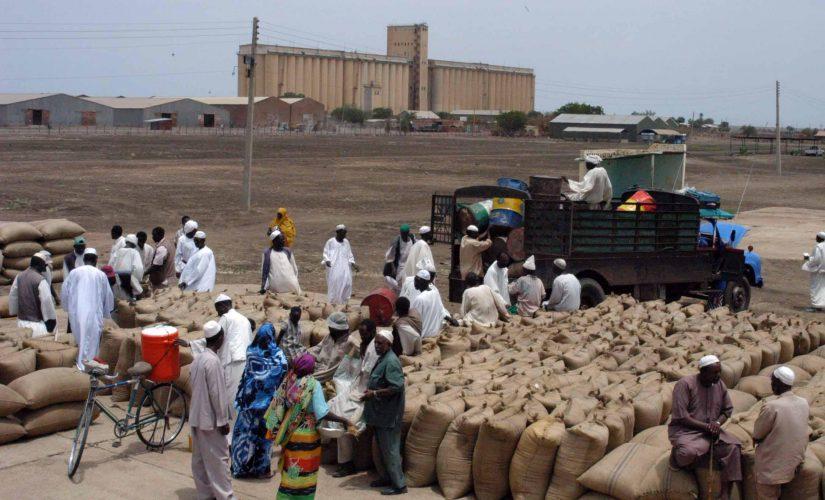أسعار الذرة بسوق محاصيل القضارف