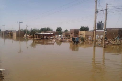 التأكيد على تفعيل القوانين والتشريعات للحد من مخاطر الفيضانات والسيول