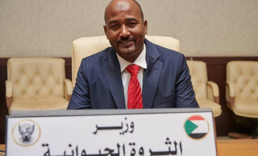 عبدالنبي يؤكد دعم وتشجيع الحكومة الإنتقالية للاستثمار في قطاع الثروةالحيوانية