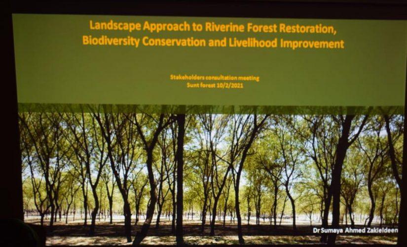 الهيئة القومية للغابات ومنظمة الفاو جهود لإعمار الغابات النيلية