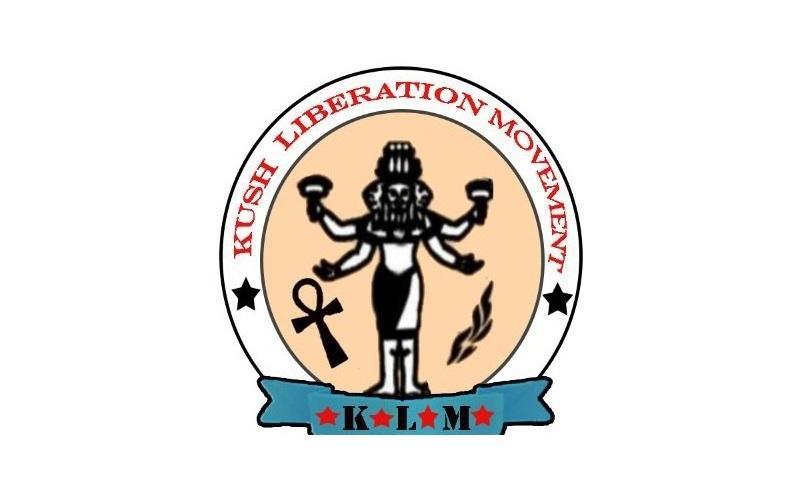 حركة تحرير كوش السودانية تقدم معينات صحية بوادي حلفا