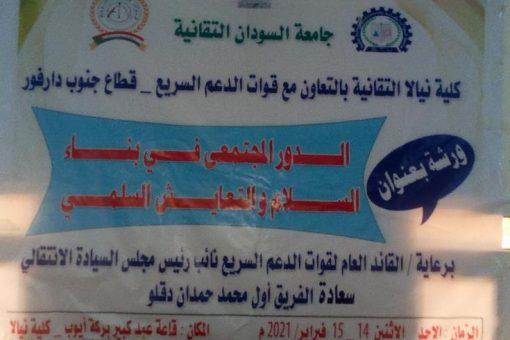 ورشة دور المجتمع المدني فى بناء السلام والتعايش السلمي
