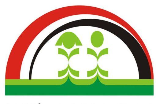 بيان للمجلس القومي لرعاية الطفولة حول حادثة الطفلة سماح الهادي