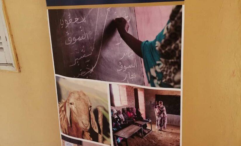 وزارة التنمية الاجتماعية تؤكد زيادة مهارات الأسر بالتدريب للتمكين الاقتصادي