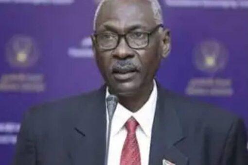 السودان يحتفل باليوم العالمي للتوعية بمخاطر الألغام