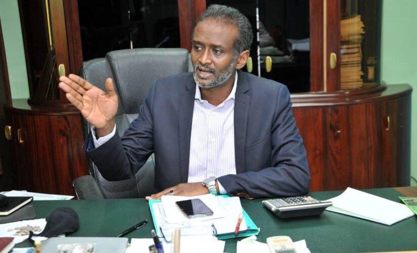 شركة السكر السودانية: خطوات للنهوض بقطاع السكر