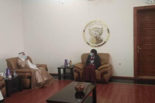 وزيرة الحكم الإتحادي تلتقي السفير السعودي