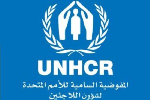 مشاركة السودان في أعمال اللجنة الدائمة للمفوضية السامية لشؤون اللاجئين