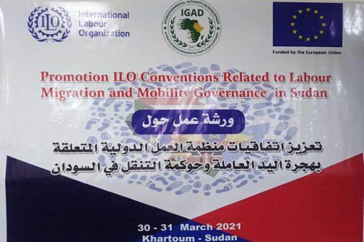 وزارة العمل تؤكد سعيها لتفعيل اتفاقيات منظمة العمل الدولية