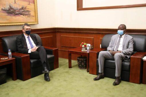 الهادي إدريس يلتقي رئيس بعثة (يونيتامس) في السودان