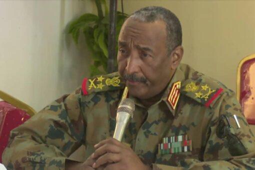 رئيس مجلس السيادة يلتقي حركات الكفاح المسلح بالجنينة