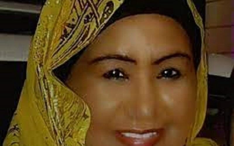 لسودان يفوز بمنصب نائب رئيس لجنة ميثاق حقوق الإنسان العربية