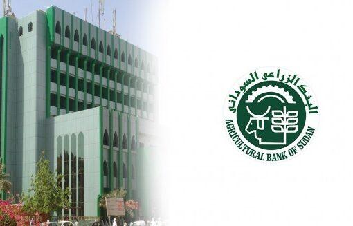 البنك الزراعي: التمويل حسب الدورة الزراعية وشهادة المرشد الزراعي بالمساحات