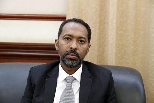 وزير شئون مجلس الوزراء يؤكد تمثيل المرأة في لجان المفاوضات