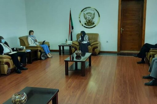 وزيرة الحكم الاتحادي تلتقي بالمدير القطري لصندوق النقد الدولي