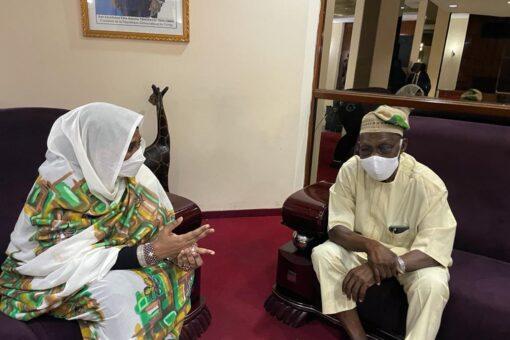 وزيرة الخارجية تلتقي الرئيس النيجيري الاسبق بكينشاسا