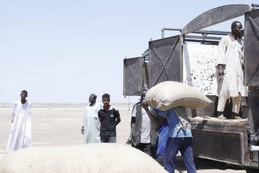 البنك الزراعي يتسلم ٣٢١٤٦٣ طنا من القمح من المزارعين