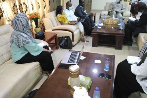 تنوير حول برنامج لجنة الخبراء الأفارقة بالنيل الأزرق