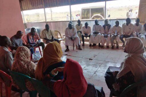 لجنة الخبراء الأفارقة تقف على أوضاع الأطفال المتٱثرين بالنزاعات بباو
