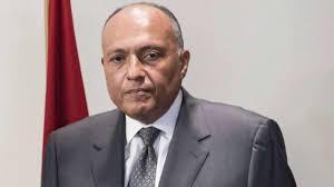 وصول وزيري الخارجية والري المصريين