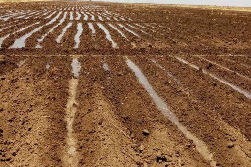 """زكريا:يؤكد استقرار الاوضاع الامنية بمحلية ياسين """""""