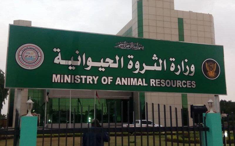 تعاون سودانى إماراتي في مجال الثروة الحيوانية ومشاريع السلام