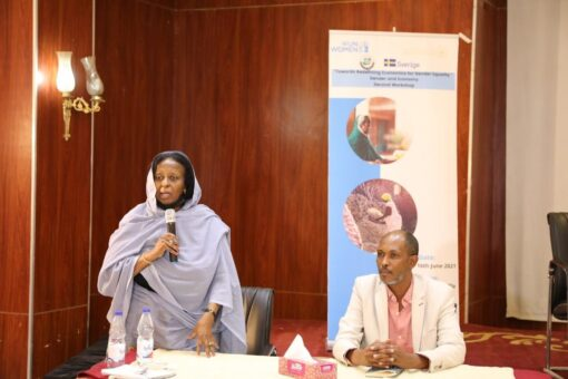 التنمية الاجتماعيّة:تمكين المرأة من أولويات الحكومة الإنتقالية