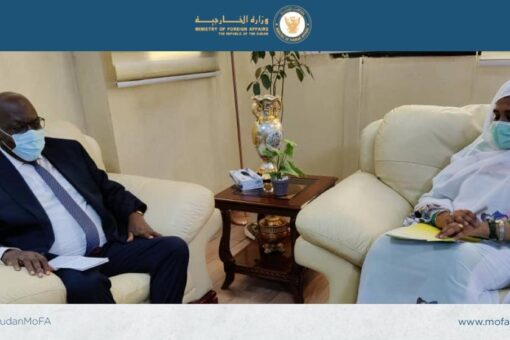 وزيرة الخارجية تلتقى رئيس آلية المراقبة فى جنوب السودان