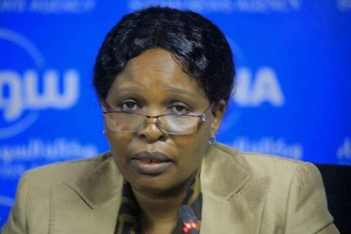 دينار:مجلس الوزراء اتخذ عددا من القرارات لمعالجة قضايا السلام والعدالة