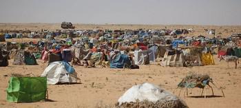 عودة أكثر من 44 ألف نازح لمناطقهم الأصلية بغرب دارفور