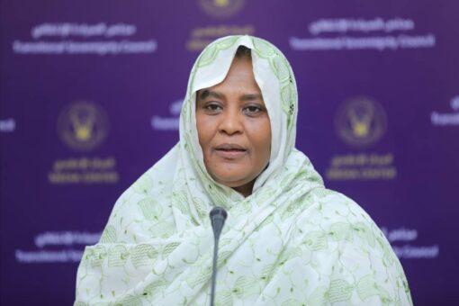 وزيرة الخارجية في جلسة مجلس الأمن حول سد النهضة