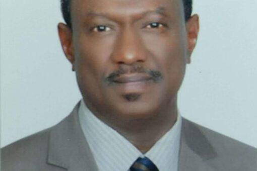 خبير أممي: القطاع الخاص سيستفيد من عودة السودان IDA