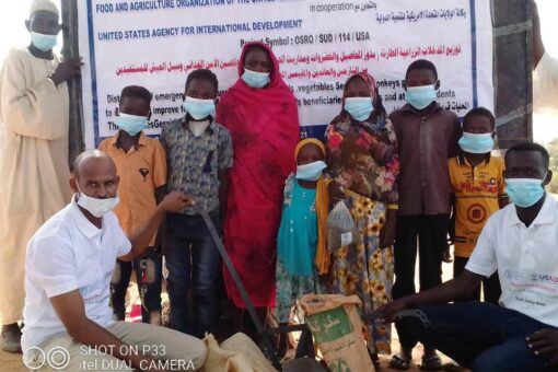 منظمة الأغذية الزراعية تدعم مزارعي بجنوب دارفور بالتقاوى