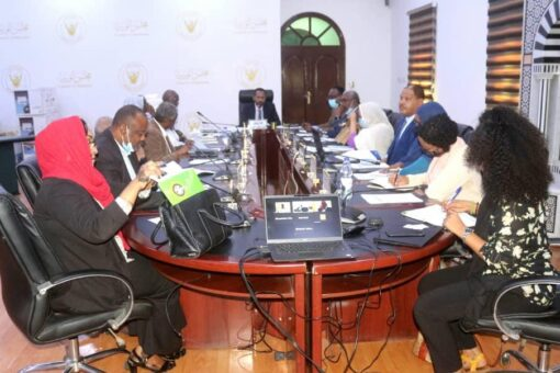 إنعقاد الاجتماع التأسيسي للجنة الخبراء المشرفة على تشكيل المجالس الاستشارية