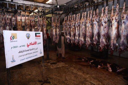 الأوقاف الكويتية توزع لحوم الأضاحي على 3820 أسرة في السودان