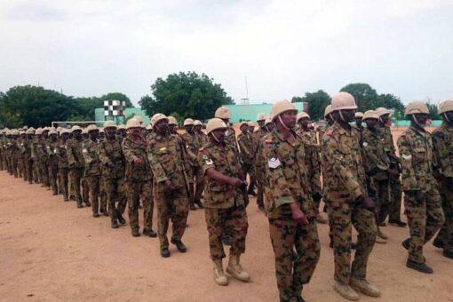 الفرقة العاشرة مشاه بابوجبيهه تحتفل بالعيد (67) للقوات المسلحة