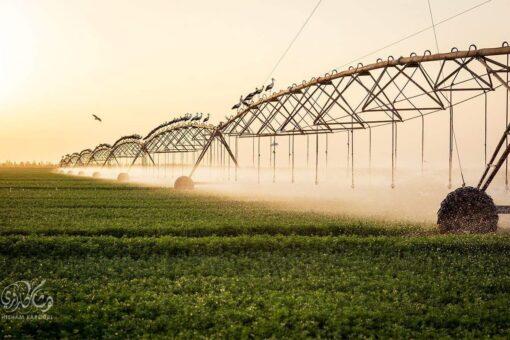 قسم الله:استعدادات مبكرة لتوفير مياه الري عقب الخريف