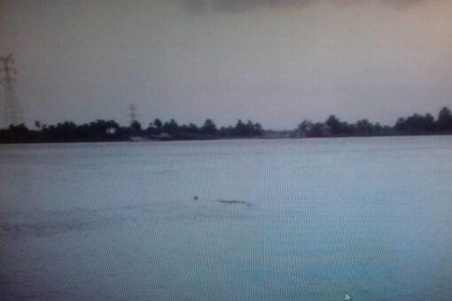 ارتفاع منسوب النيل الرئيسي والعطبرواي