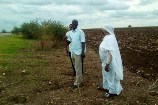 50 مليون دولار لمشروع السودان للإدارة المستدامة للموارد الطبيعية بسنار