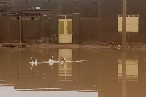 انهيار عدد من المنازل بمحليتي عطبرة وبربر جراء السيول