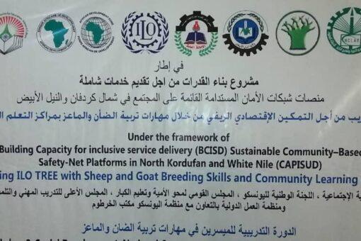 إنطلاق ورش تدريب التمكين الإقتصادي الريفي بشمال كردفان