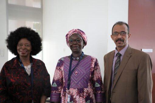 ورشة تقييم احصاءات النوع الاجتماعي في السودان