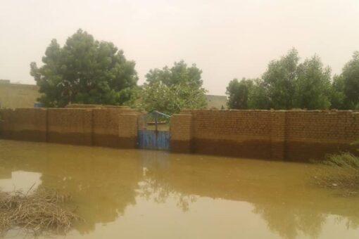 ارتفاع منسوب نهر النيل الرئيسي والعطبراوي بمحطة عطبرة