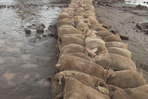 انخفاض منسوب النيل الأزرق لليوم الخامس على التوالي