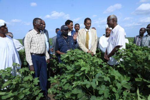 وزير الري: معالجات عاجلة لآثار الفيضانات والسيول بمشروع الرهد الزراعي