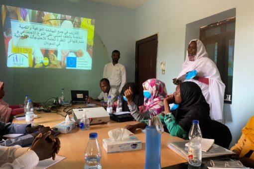ورشة حول العنف القائم على النوع بشمال دارفور