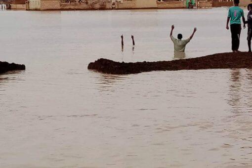 تأثر 700 أسرة بمحلية أم القرى في الجزيرة بالسيول والأمطار