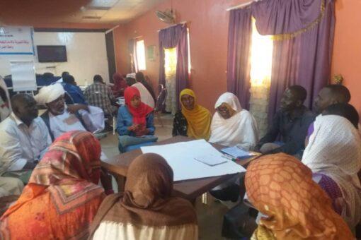مجلس رعاية الطفولة ينظم ورشة تنويرية حول زواج القاصرات