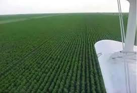 محافظ مشروع الجزيرة يؤكد المضي في انفاذ التحول الزراعي