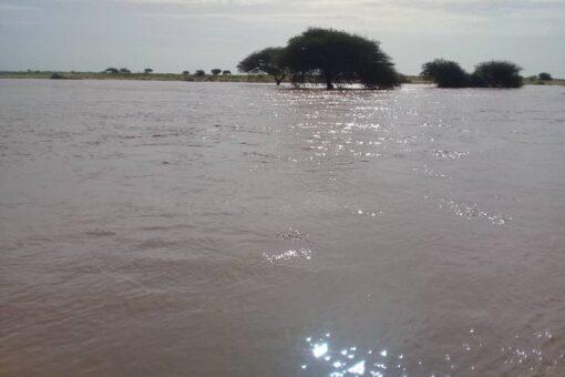 تسيير قافلة مساعدات صحية لمنكوبي السيول بمناطق وحدةجودة بالنيل الأبيض